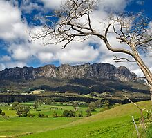 Rural Mount Roland by Peter Daalder