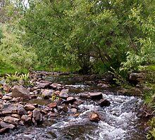 The Beautiful Creek at Glen Dhu by Odille Esmonde-Morgan