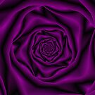 Purple Rose Spiral by Objowl