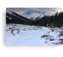 Elbow Pass valley XI Canvas Print