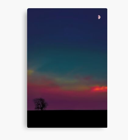 One Tree Moon Canvas Print