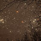 Stars at Night by ckredman031762