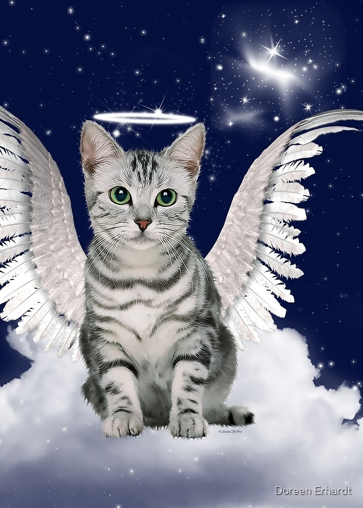 Tabby Cat Angel Blue Starry Sky by Doreen Erhardt