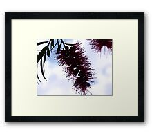 in the shadow of the sun Framed Print