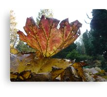 Red Giant Autumn Leave  Canvas Print