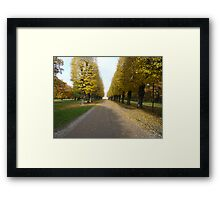 Yellow Giants & Pure Presence Framed Print