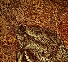 The Frogmouth. by James Fosdike