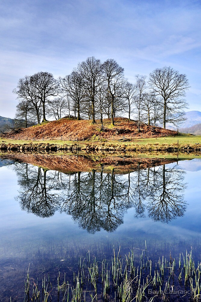 River Brathay Reflections - The Lake District by Dave Lawrance