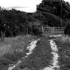 Trentinney Farm Gate by clydeypops
