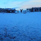 Snowy Fields at Dusk by clydeypops
