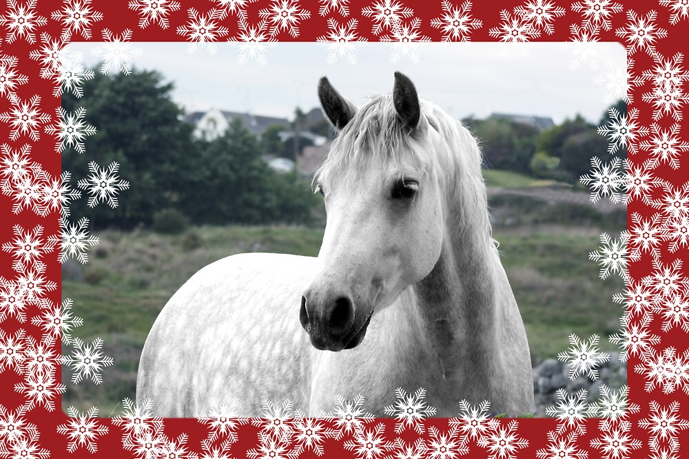 Connemara Pony Christmas Card - Type 1 by ConnemaraPony