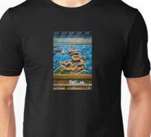 Dragon Wall Unisex T-Shirt