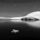 The lonely iceberg by Robyn Lakeman