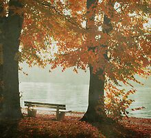 take a seat in the light by Iris Lehnhardt