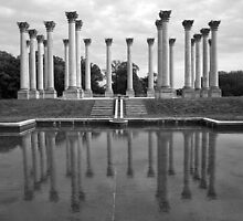 The Almost Forgotten Columns by Cora Wandel