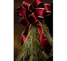 Christmas Greens Photographic Print