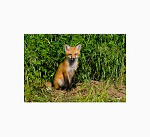 Red Fox Kit Unisex T-Shirt
