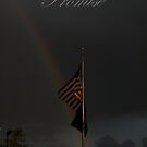 Rainbow of Promise by Judith Hayes