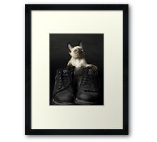 These Boots are Made for Scratchin' Framed Print
