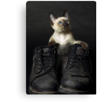 These Boots are Made for Scratchin' Canvas Print