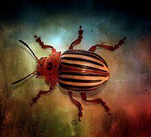Beetle Juice by Brenda Burnett