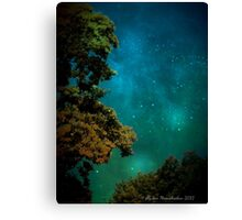 Mysterious Night Canvas Print
