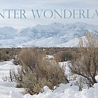 Winter Wonderland by teresalynwillis