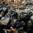 Coal Rocks by Phil Campus
