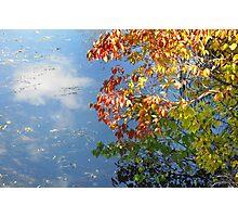 Cloud Reflection Photographic Print