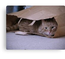 I love brown paper bags Canvas Print