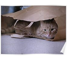 I love brown paper bags Poster