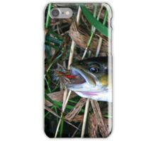 """Brown Trout Blues iPhone case iPhone Case/Skin"