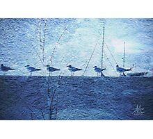 Cold on the Dock Photographic Print