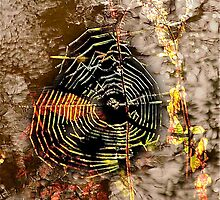 Web Abstract .. by Mike  Waldron