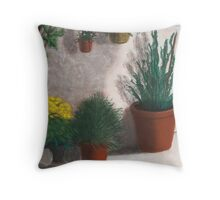 Stucco and Clay Throw Pillow
