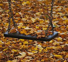 Autumn Swing by Rae Tucker