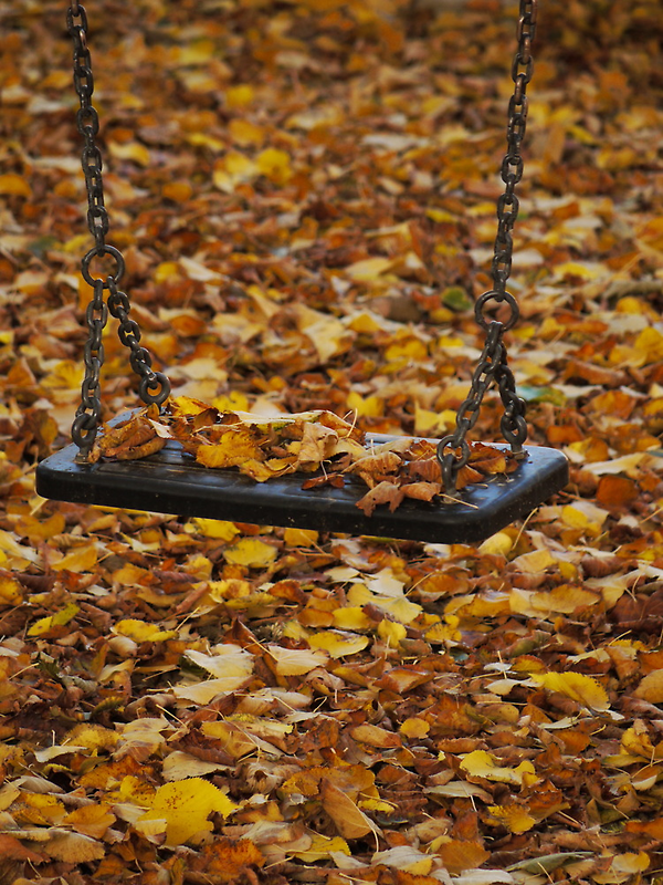 Autumn Swing by Rae Tucker