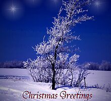 Christmas Greetings Across the Miles by Vickie Emms