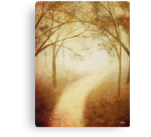Amanda's Path Canvas Print