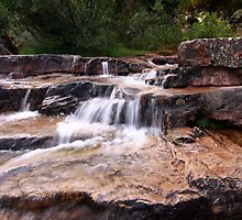 Provo River Cascade by David Kocherhans