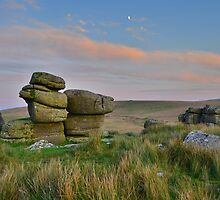 Dartmoor: The Moon Over the Moor by Rob Parsons