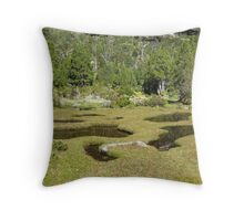 In Pinestone Valley Throw Pillow