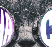 Alpha Chi Cat Galaxy Sticker