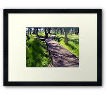 Boardwalk to a natural phenomenon Framed Print