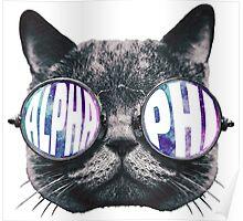 Alpha Phi Cat Galaxy Poster