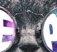 Aephi Cat Galaxy Sticker