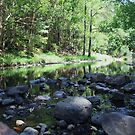 currumbin valley creek ... by gail woodbury