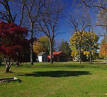 Landis Valley Millstone Grove by purplefoxphoto