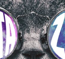 Delta Zeta Cat Galaxy Sticker