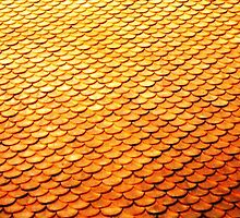 Golden Scales © by Ethna Gillespie